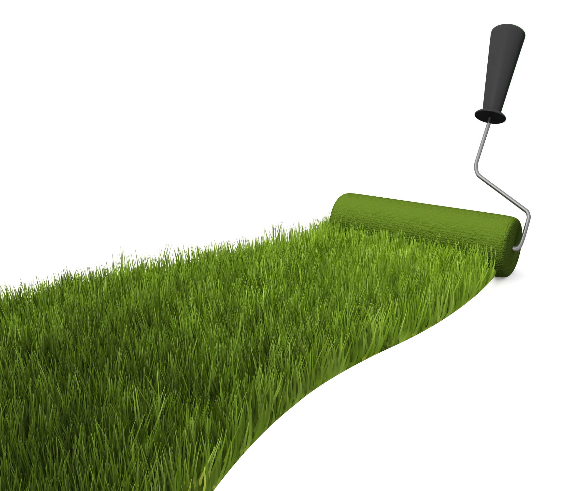grass_ground_with_roller_stock_photo_slide01